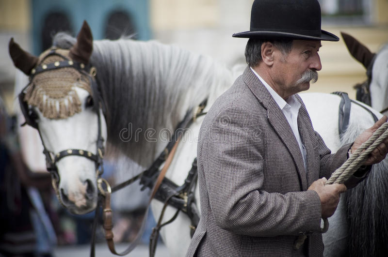 Gentleman Horse Carriage Driver royalty free stock image