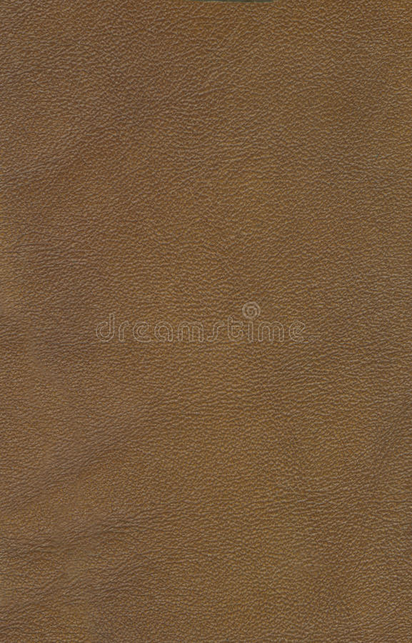 Download Genuine leather background stock photo. Image of material - 24483288