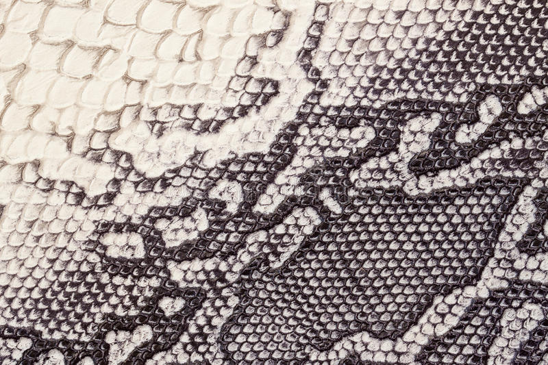 Genuine leather texture with imitation of exotic reptile with with an interesting pattern, trendy background, beige. Genuine leather texture with imitation of royalty free stock photos