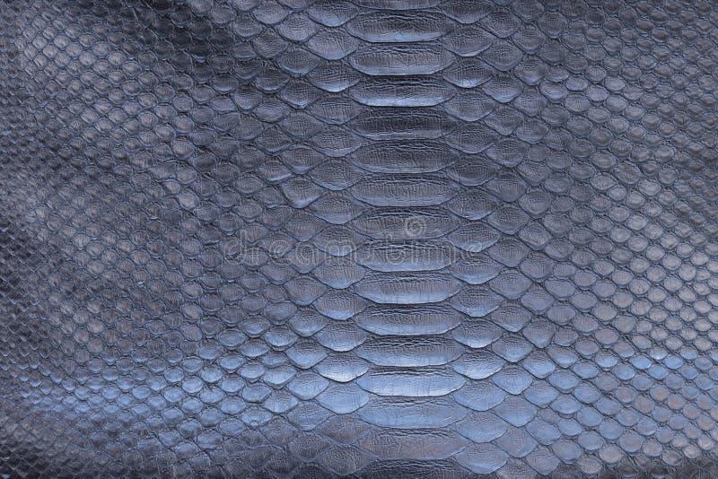 Genuine python snakeskin leather, snake skin, texture background. Genuine python snakeskin leather, texture background royalty free stock images