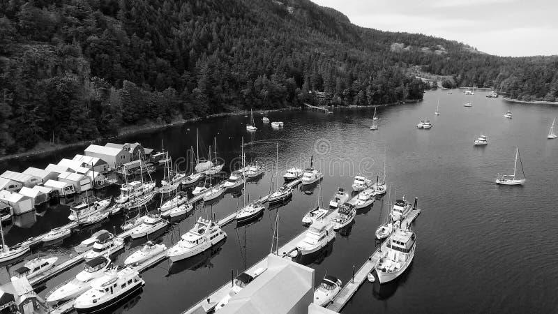 Genuy Podpalany widok z lotu ptaka w Vancouver wyspie fotografia stock
