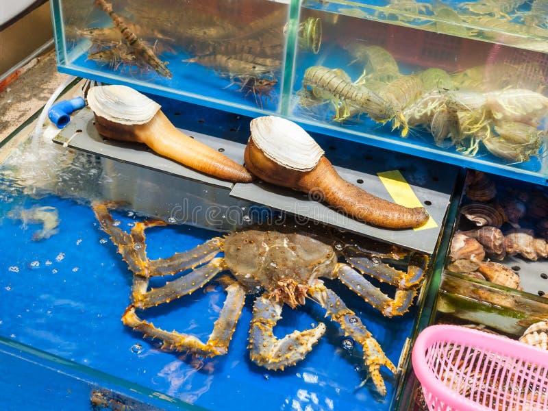 geoduck и краб в рыбном базаре в городе Гуанчжоу стоковое фото rf