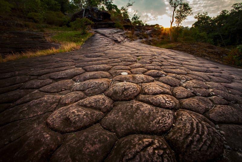Geología de Suncrack en el phitsanuloke Tailandia del parque nacional del rongkla del hin del phu fotografía de archivo