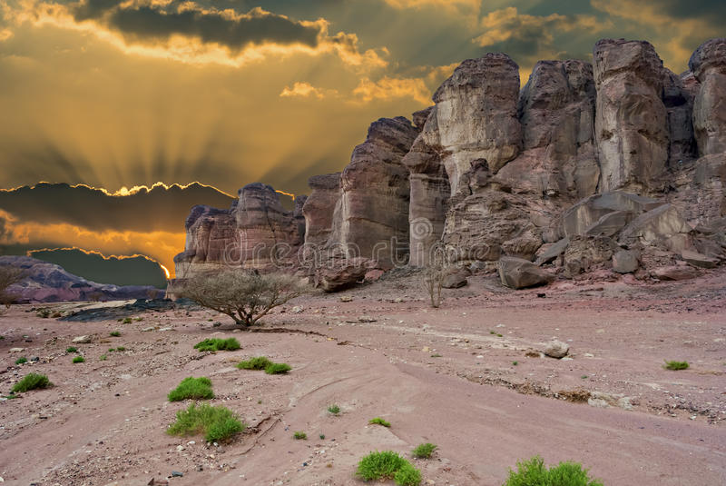 Geological formations in nature desert valley of Timna park, Israel royalty free stock image