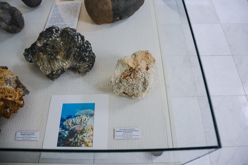 Minerals on display at the museum, Exhibits of the Museum named after Vernadsky in Moscow royalty free stock photography