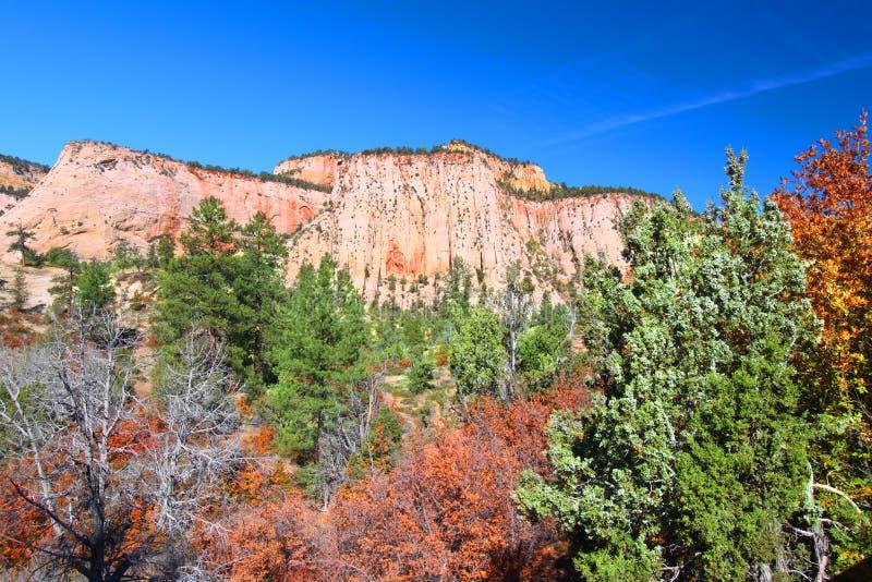geologii park narodowy zion obraz royalty free