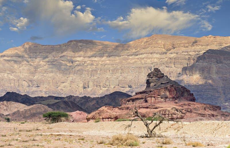 Geologische formatie als Schroef, woestijn van Negev, Israël wordt genoemd dat royalty-vrije stock fotografie
