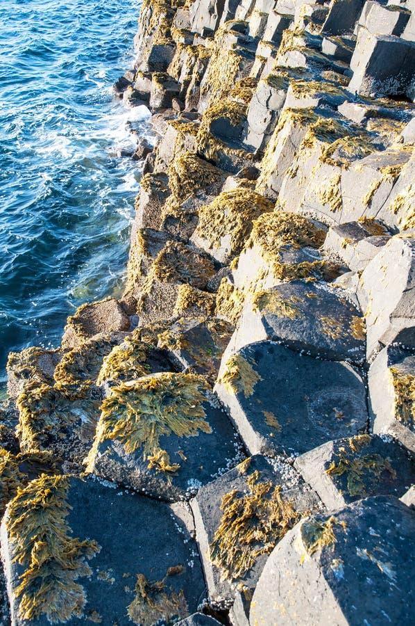 Geologiskt bildande för jättevägbank i nordligt - Irland royaltyfri foto