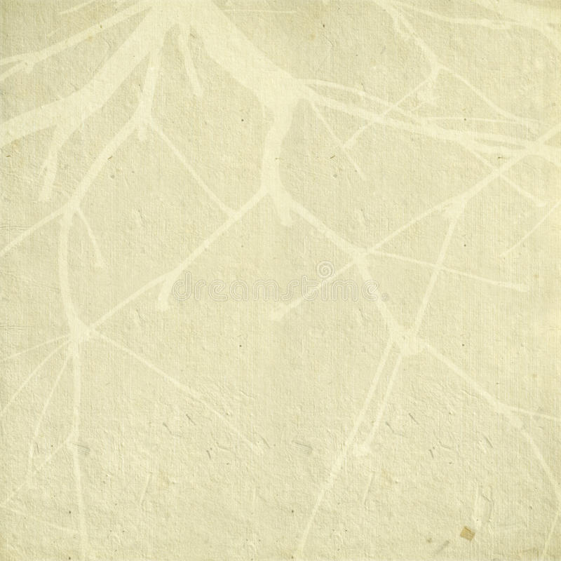 Geometric almond branch on paper stock photography