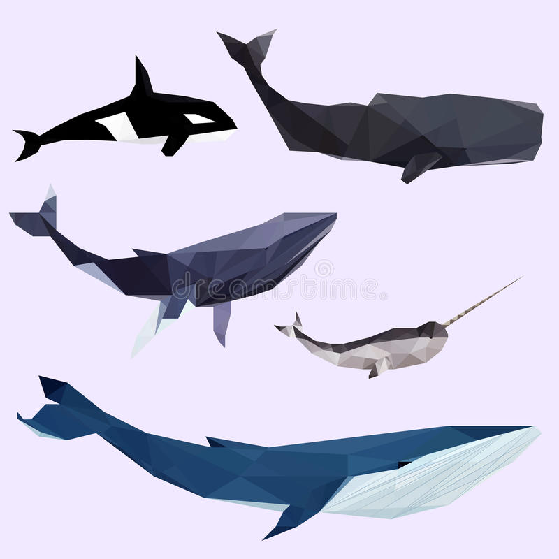 Download Geometric Colored Whale Set Stock Vector