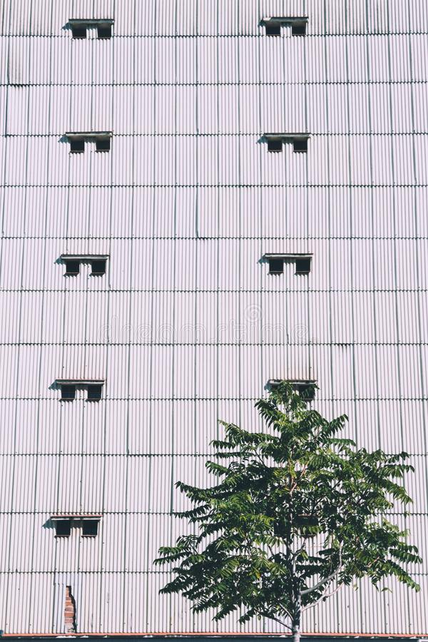 Geometric pattern of windows in a building contrast with a tree. Tree gives to the concrete jungle a touch of life stock photography