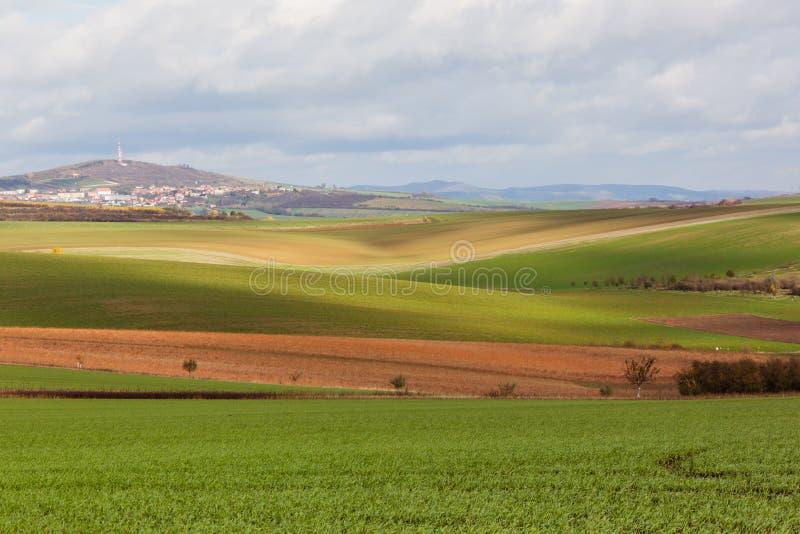 Geometrie von Feldern stockfoto
