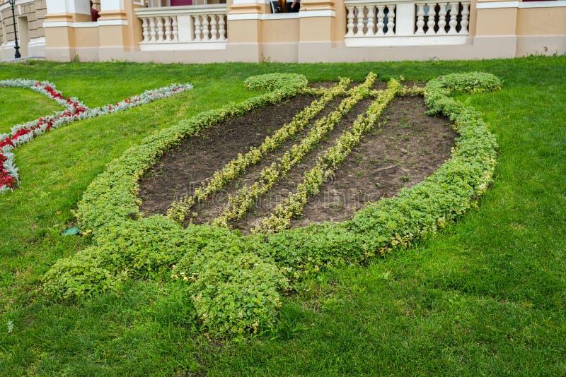 Geometrisch gepflanztes Blumenbeet mit Blumen in der Form stockfotos