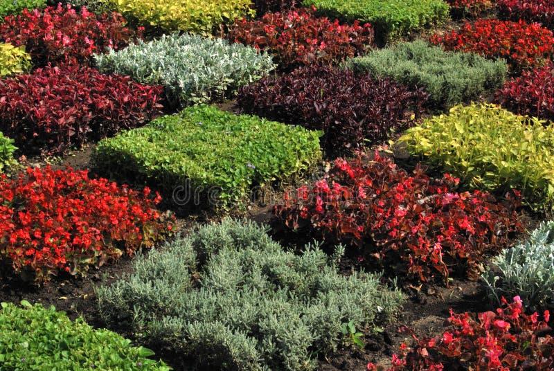 Geometrischer Garten lizenzfreies stockfoto
