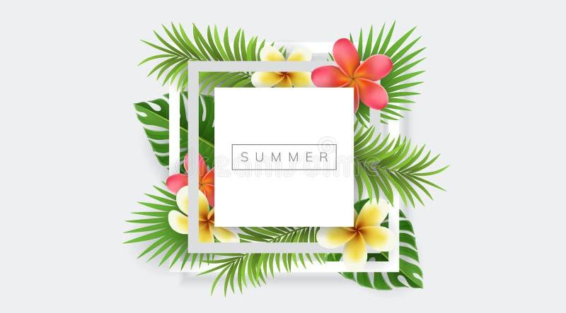 Geometrischer quadratischer Rahmen mit Palmblatt und exotische Blume für Sommer vektor abbildung