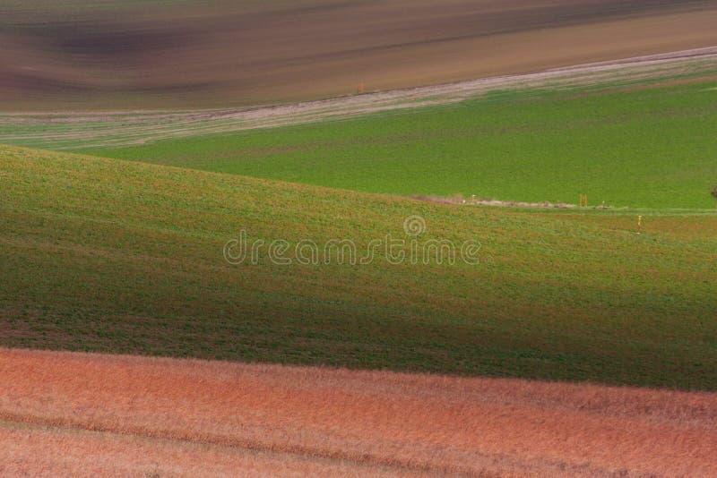 Geometry of fields. Autumn in Moravia stock photo