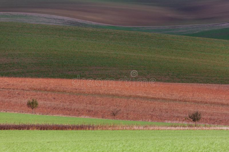 Geometry of fields. Autumn in Moravia royalty free stock photography