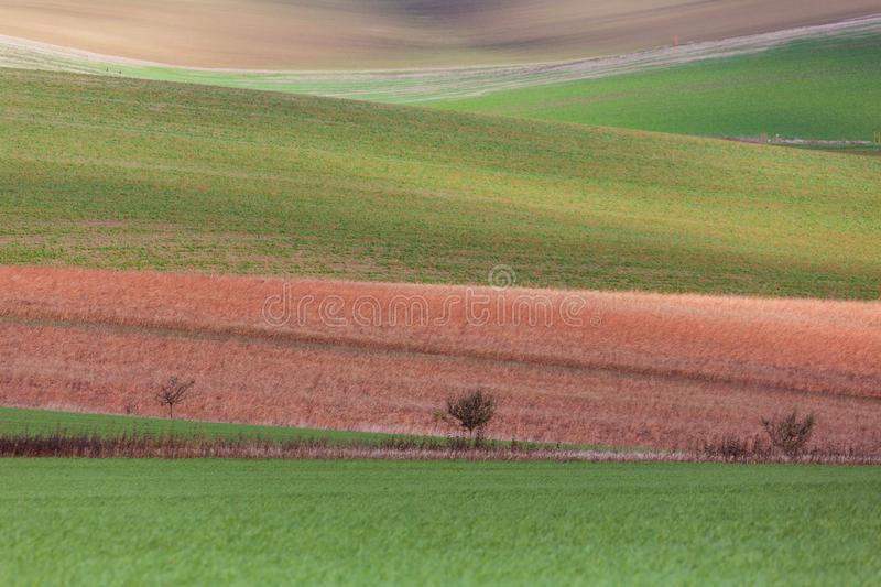 Geometry of fields. Autumn in Moravia stock images