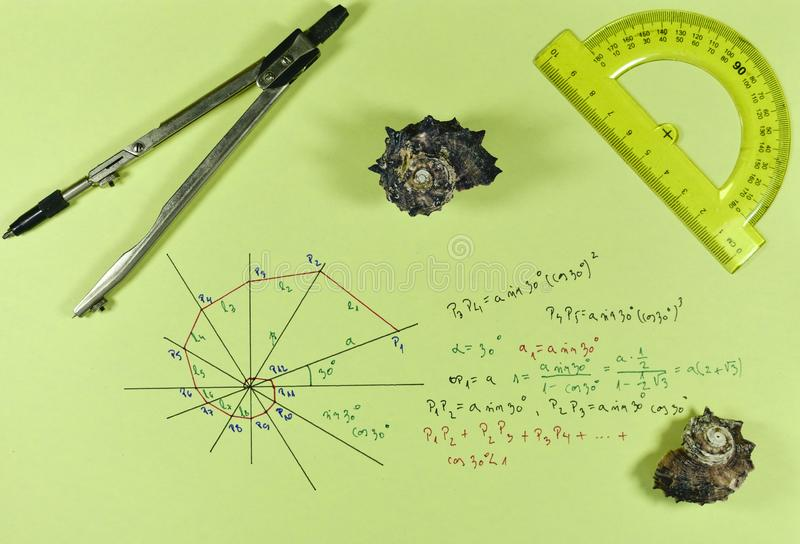 Geometry of a shell with compass. Two shells with ruler and compass , mathematical geometric series and formulas of the shape of the shell stock photo