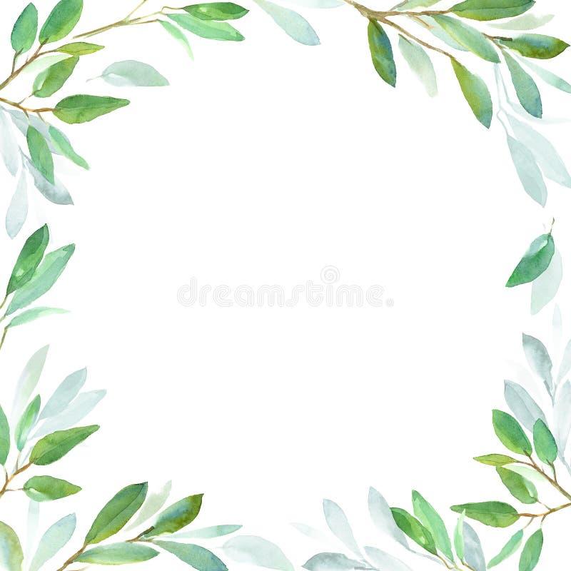 Geometryczna botaniczna projekt rama zielone liście Akwareli ilustracja dla ślubnego zaproszenie projekta, oznakuje, sieć ilustracja wektor