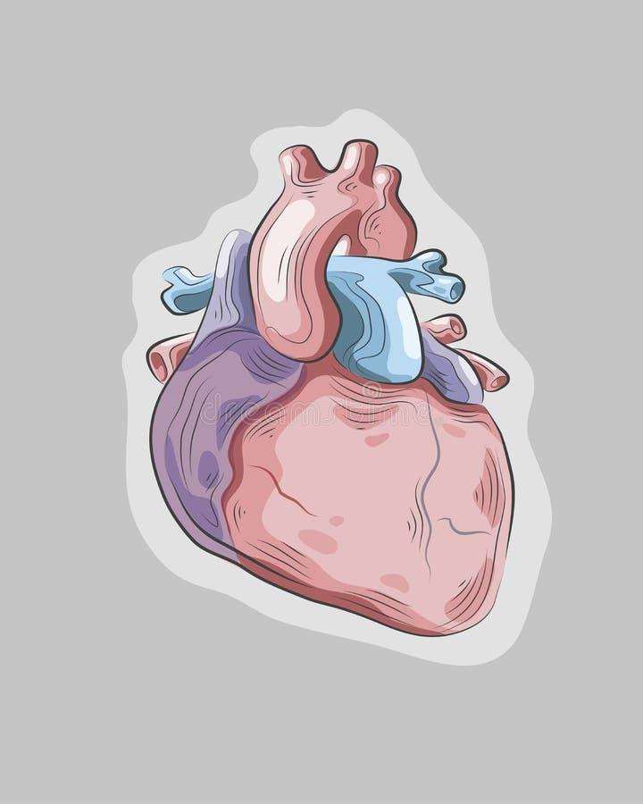 Geopenbaard hart vector illustratie