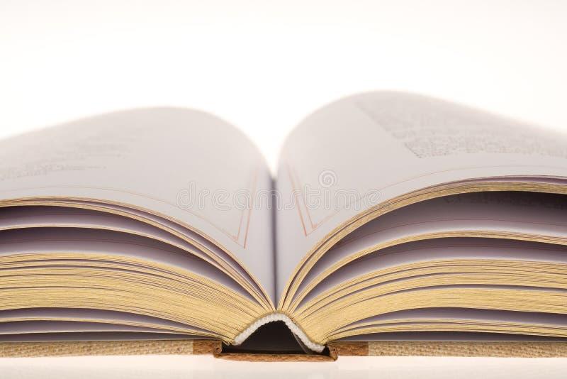 Geopend boek met gouden bladeren stock afbeeldingen