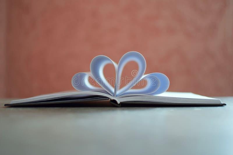 Geopend leeg decoratief notitieboekje royalty-vrije stock foto