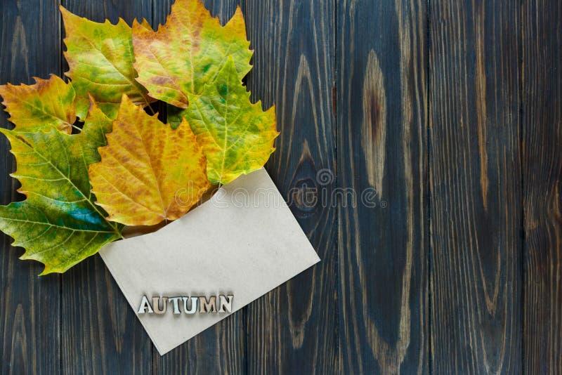 Geopende document envelop op oude bruine houten achtergrond met gele bladeren Uitstekende stijl van mededeling stock foto