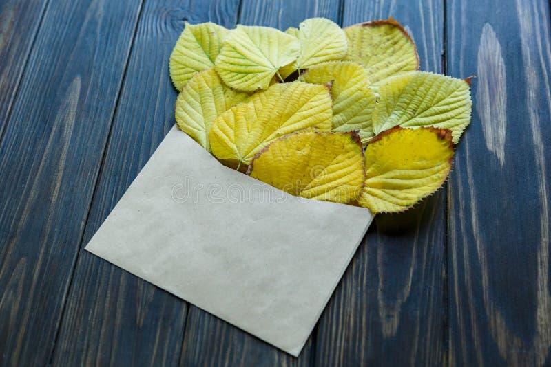 Geopende document envelop op oude bruine houten achtergrond met gele bladeren Uitstekende stijl van mededeling royalty-vrije stock foto