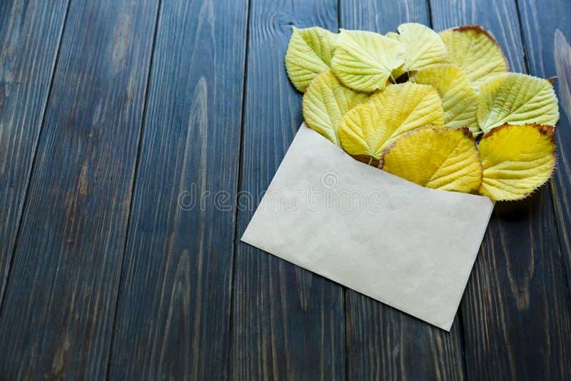 Geopende document envelop op oude bruine houten achtergrond met gele bladeren Uitstekende stijl van mededeling royalty-vrije stock afbeelding