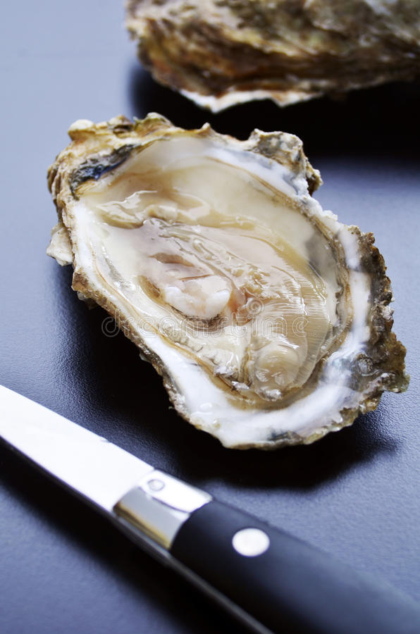 Geopende oester royalty-vrije stock afbeeldingen