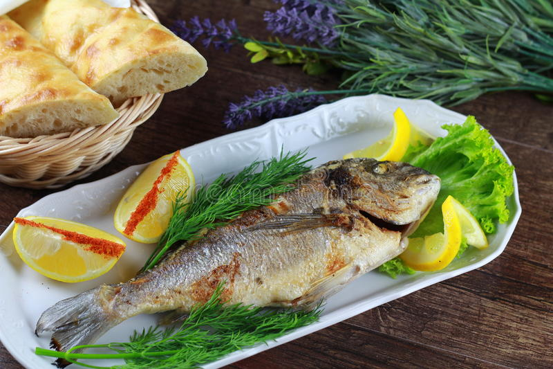 Georgain fisk royaltyfri fotografi