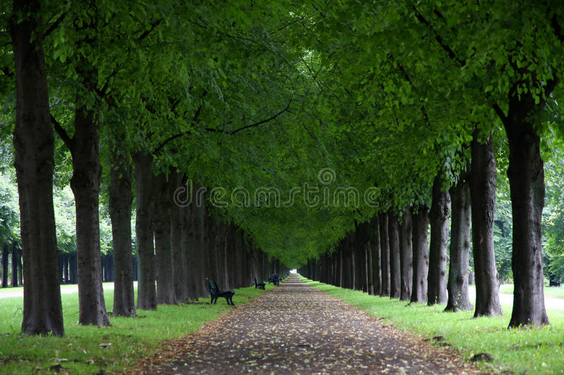 George Gardens in Hannover, Germany royalty free stock photos
