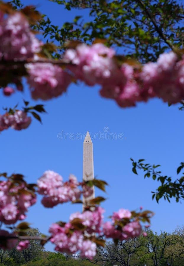 George Washington Monument stock image