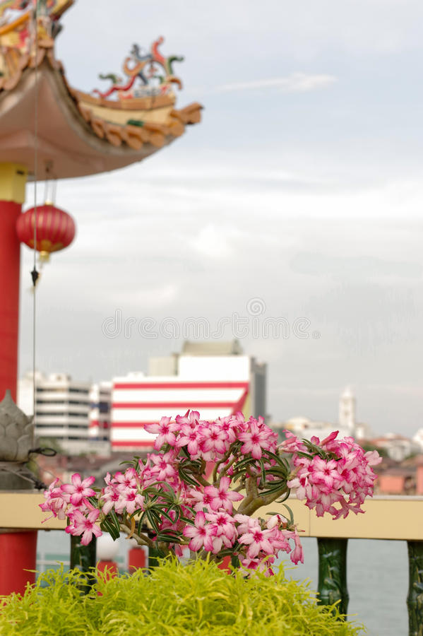 GEORGETOWN, MALAYSIA - JANUARY 18, 2016: a closeup view of Hean Boo Thean Kuanyin Chinese Buddhist temple in Clan Jetties. Built. GEORGETOWN, MALAYSIA - JANUARY royalty free stock image
