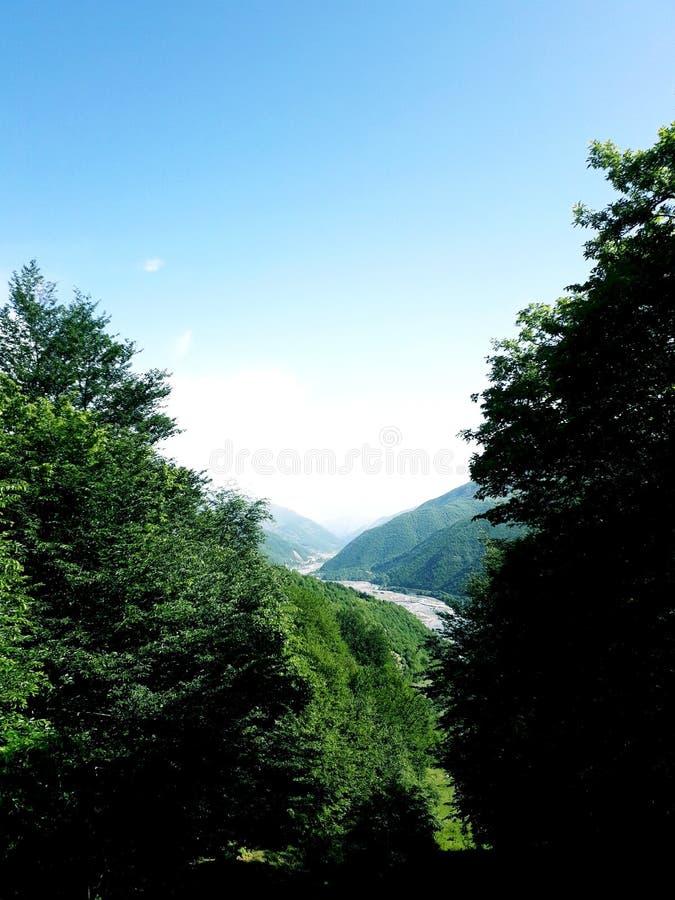 georgia lizenzfreie stockfotografie