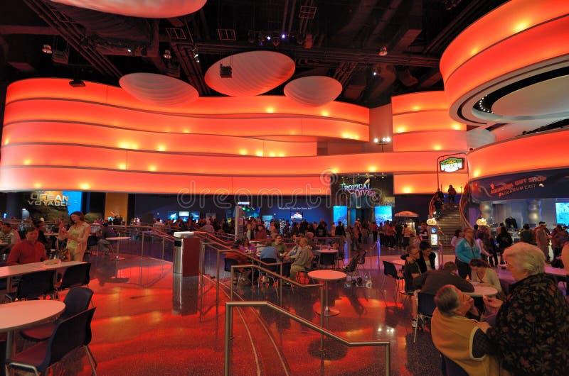 Georgia Aquarium Food Court. Food Court at the Georgia Aquarium, the world's largest aquarium, in Atlanta, Georgia stock image