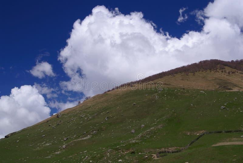 Georgia berg royaltyfri fotografi