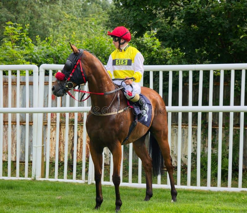 Georgia Dobie BRITISCHER Jockey Pferderennen des Lehrlings lizenzfreie stockbilder