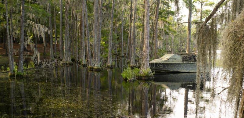 Georgia State Swamp Lake tiene sur profundo abundante de los árboles de Cypress fotos de archivo