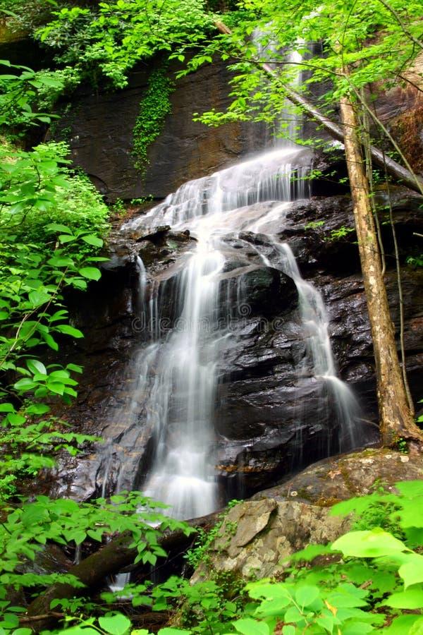 georgia wodospadu zdjęcie royalty free