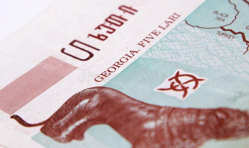 Georgian money lari on white stock image