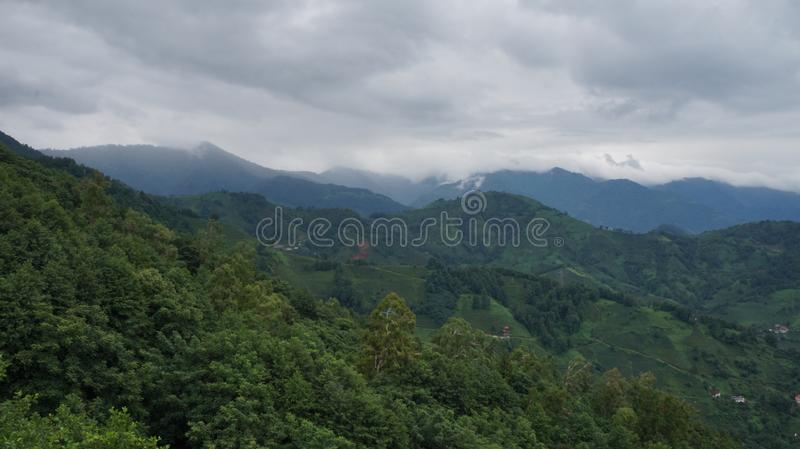 Georgian mountains. Are full of trees and grass royalty free stock photos