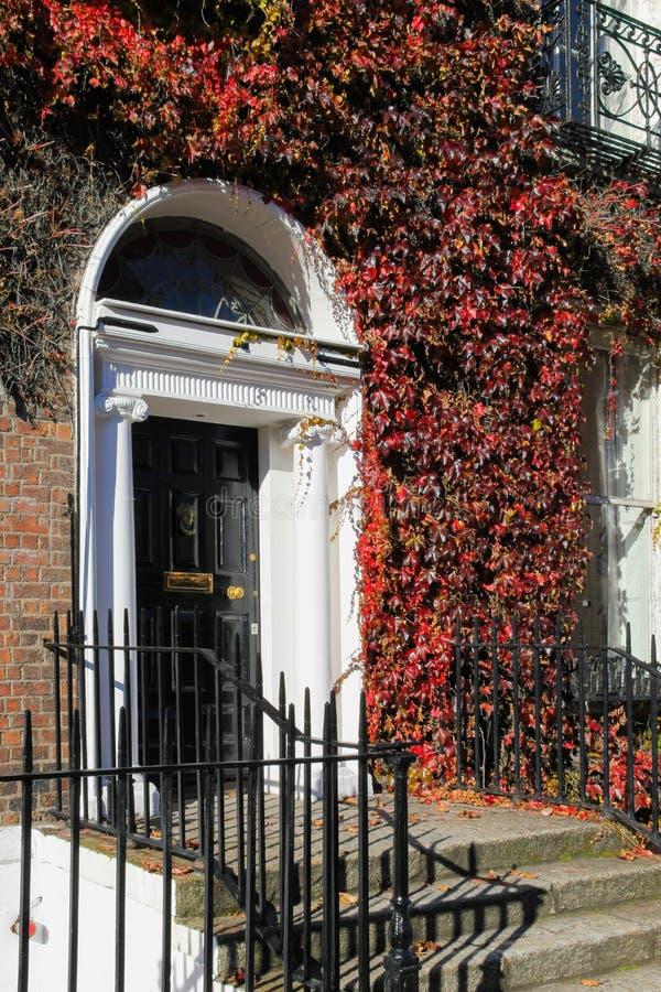 Georgische Tür umgeben durch Efeu. Dublin. Irland lizenzfreies stockbild