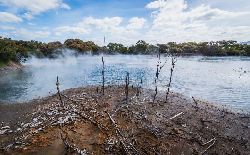 Geotermiczny basen, Nowa Zelandia obraz royalty free