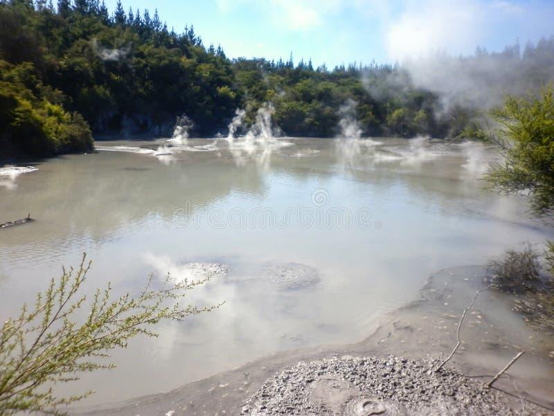Geotermiczny Borowinowy basen Rotorua, Nowa Zelandia zdjęcia royalty free
