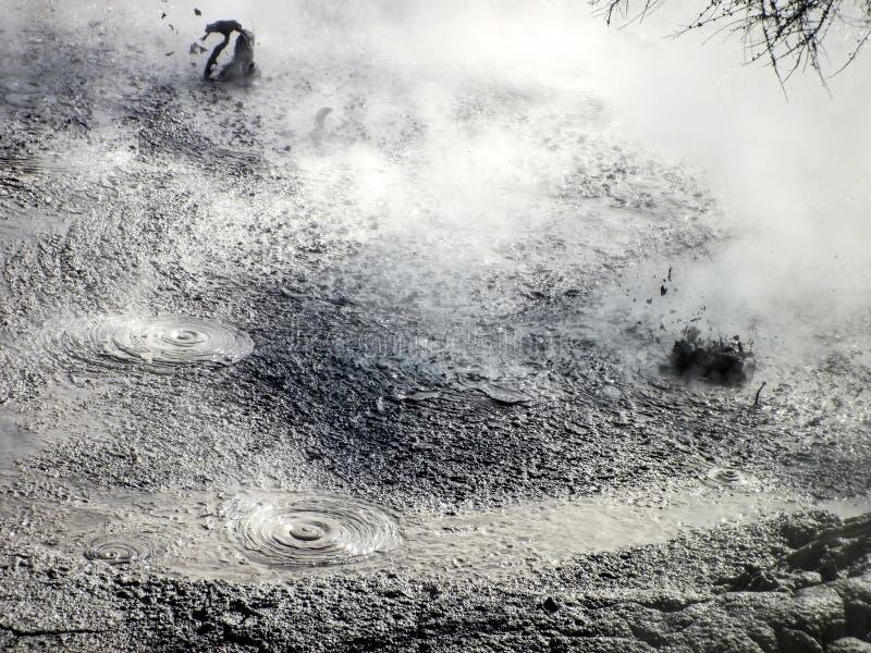 Geotermiczny Borowinowy basen Rotorua, Nowa Zelandia obrazy stock