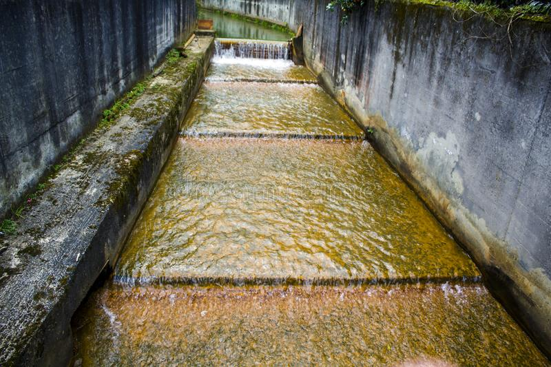 Geotermiczny gorącej wody spływanie w Furnas, Sao Miguel, Azores zdjęcia stock