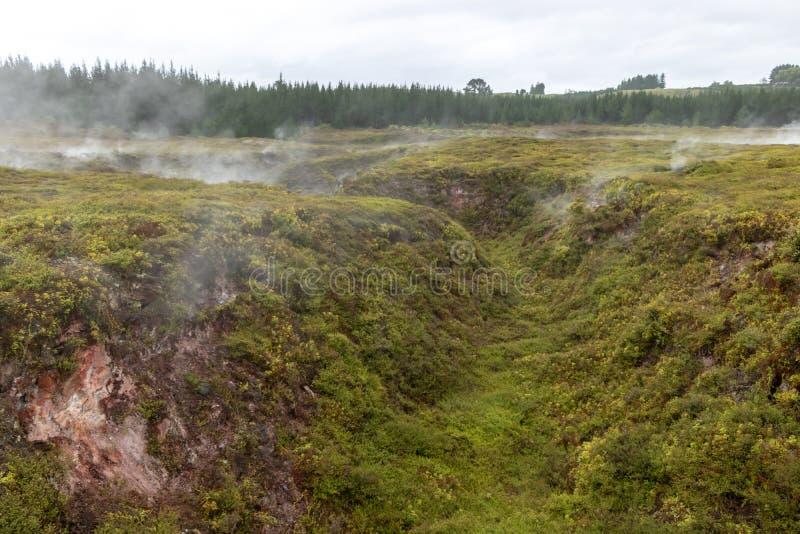 Geotermiczny krajobraz, Taupo, Nowa Zelandia obrazy royalty free