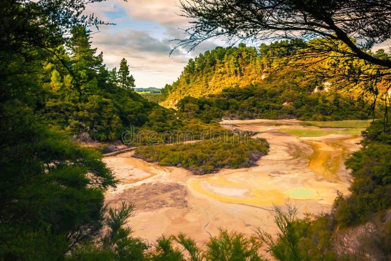 Geotermiczny krajobraz w Nowa Zelandia fotografia stock